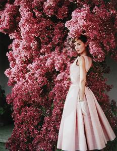 Audrey Hepburn with Flowers II, Rome