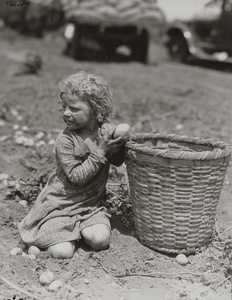 Child Picking Long Island Potatoes