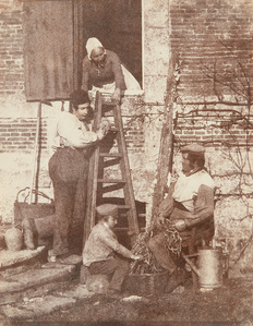 Sorting Beans: A Group of Argentelle; Standing, Louis Dodier