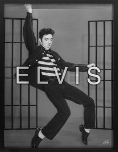 Elvis / Lives