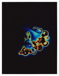Unseen Potential (Psilocybe Tampanensis Sclerotia)