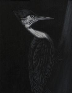 Woodpecker (after Meunier)