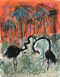 Two Blacks Flamingos