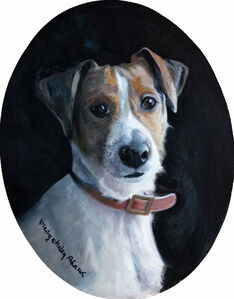 Handsome Russell (Jack Russell Terrier)