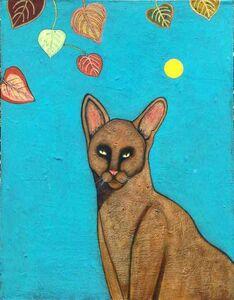 Caramel Cat