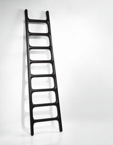 Carbon Ladder
