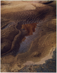 Drying Pool in Side Canyon, Water Pocket, Utah, 1963