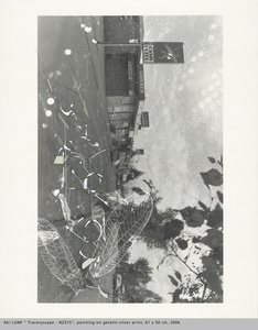 Traceryscape NZ315