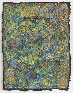 Crop Circle Lichen