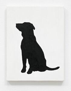 MPDH: Dog (Black/White)