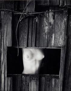 Torso in Window