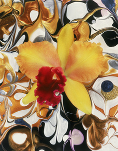 Hollywood Cattleya Gold with Red Tongue