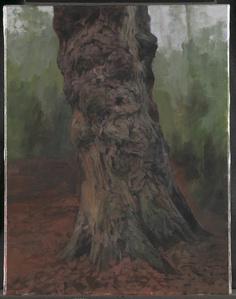 Portrait of an Old Midlander (Single Tree)