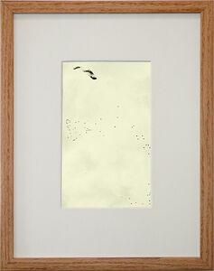 Starling Drawings/Drawing #7 (small)