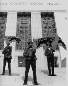 Black Panther demonstration, Alameda Co. Court House, Oakland, CA, during Huey Newton's trial