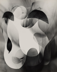 Untitled (organic abstract)