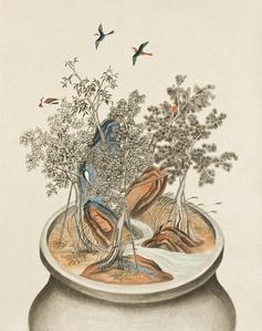 Growing Vase-3