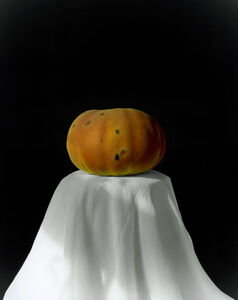 Pumpkin 2008 (2-1) [南瓜 2008 (2-1)]
