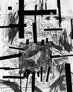 Untitled #296 (pigeon)
