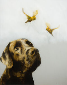 Dog With Birds And String