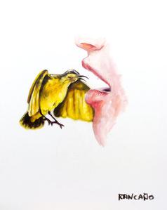 Yellow Sunbird