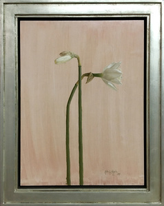 Narcissus, Narcissus