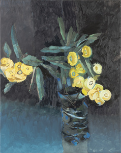 Yellow flowering eucalyptus [5]