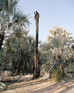 Uriuavim Kapika Kunene Region, Namibia