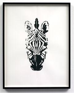 Zebra (right hand side)