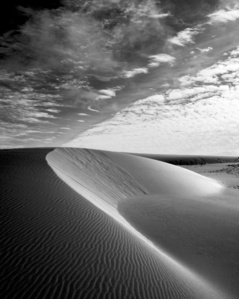 Vertical Dune, Oregon #583