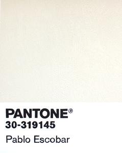 Birktone Series: PABLO