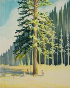 Cedar Tree with Creep