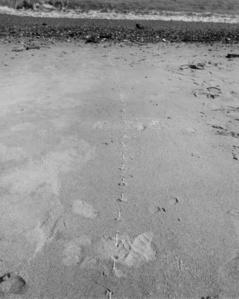 Untitled (Sand, London)