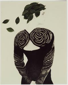 Untitled (Krizia), 1989