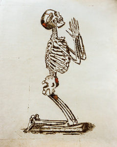 Praying (The Anatomy of Bones), after William Cheselden (Pictures of Junk)