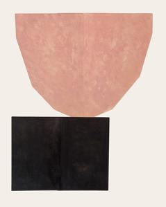 Pink Natural V