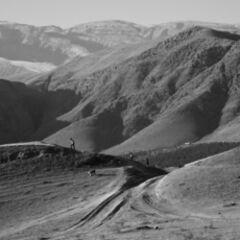 Organic by design (Valley of Nissa, Turkmenistan)