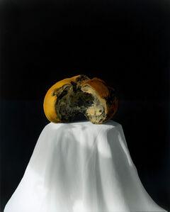 Pumpkin 2008 (2-2) [南瓜 2008 (2-2)]