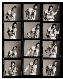Kelly LeBrock as Greed, Contact Sheet, Los Angeles