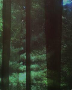Untitled from Blink/Matataki