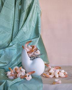 Still Life with Frozen Shrimp