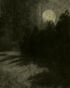 Nocturnal Landscape 88