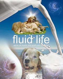 Fluid Life