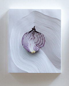 """""""Slicing the Onion No. 005"""" Series 2 of 6"""