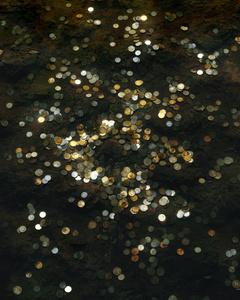 Coins #4