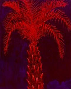 Palo Rojo