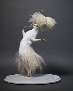 Dancing Queens (White)