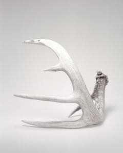 Seneca Horns