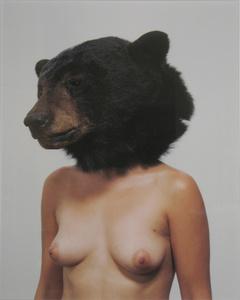 Bear Head Study