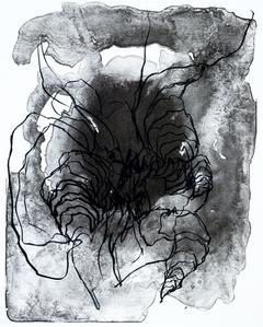 organism (Wald)VI